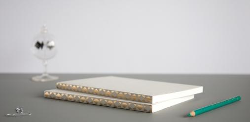 Ola studio foiled spine notebooks